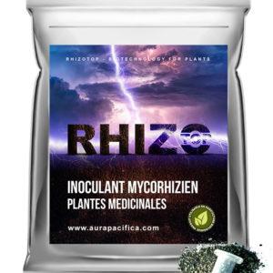Inoculum Endo-Mycorhizien – Plantes Médicinales