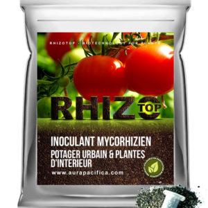 Inoculum Endo-Mycorhizien – Potager urbain et plantes d'intérieur