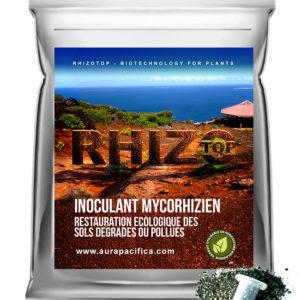 Inoculum Endo-Mycorhizien – Restauration écologique des sols dégradés ou pollués