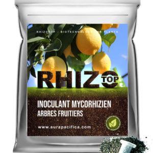 Inoculum Endo-Mycorhizien – Arbres Fruitiers