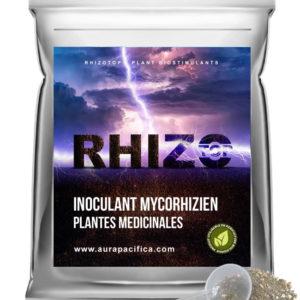 Inoculum Endo-Mycorhizien – Plantes Médicinales – Solution en vrac