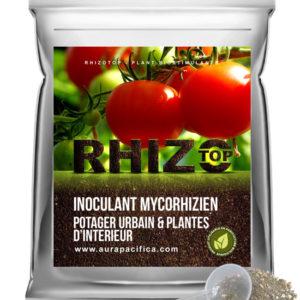 Inoculum Endo-Mycorhizien – Potager urbain et plantes d'intérieur – Solution en vrac