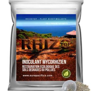 Inoculum Endo-Mycorhizien – Restauration écologique des sols dégradés ou pollués – Solution en vrac